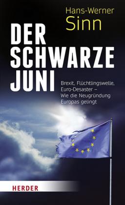 Hans-Werner Sinn: Der Schwarze Juni