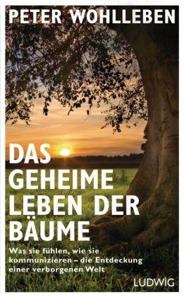 Peter Wohlleben: Das geheime Leben der Bäume