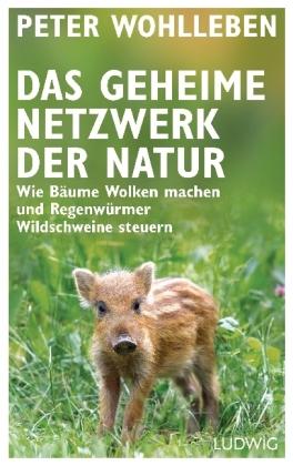 Peter Wohlleben: Das geheime Netzwerk der Natur