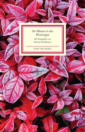 Martina Hochheimer: Die Blumen in den Wintertagen