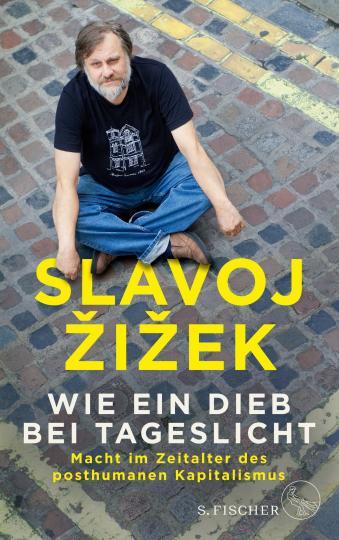 Slavoj Zizek: Wie ein Dieb bei Tageslicht