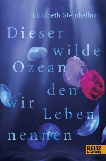 Elisabeth Steinkellner: Dieser wilde Ozean, den wir Leben nennen