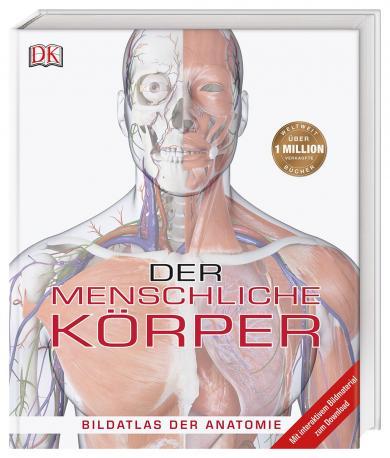 Steve Parker: Der menschliche Körper