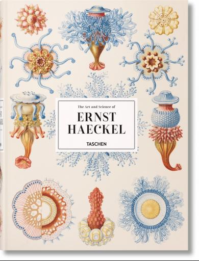 Julia Voss, Rainer Willmann: The Art and Science of Ernst Haeckel