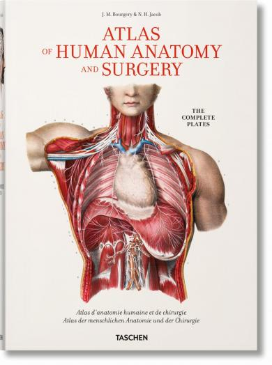 Jean-Marie Le Minor, Henri Sick: Bourgery. Atlas of Human Anatomy and Surgery